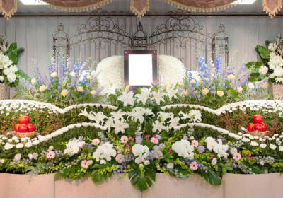 3/17(土)9:30~12:00 新小岩ホール見学会!