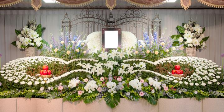 3月1日(日)9:30~12:30 勝田台駅ホール見学会
